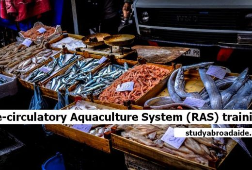 Re-circulatory Aquaculture System (RAS) training 28 to 30 August 2018